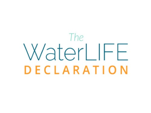 the waterlife declaration large