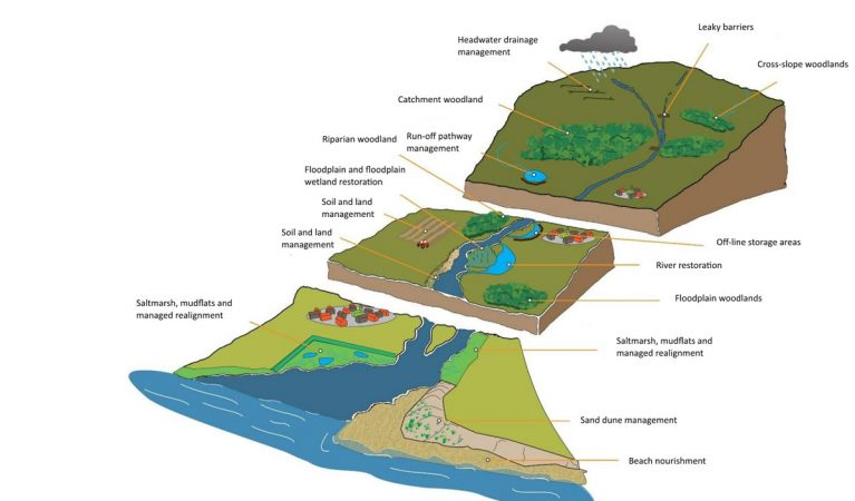 catchment-diagram