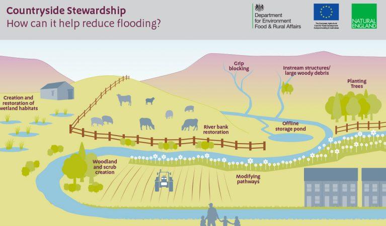 cs-flood-reduction-infographic