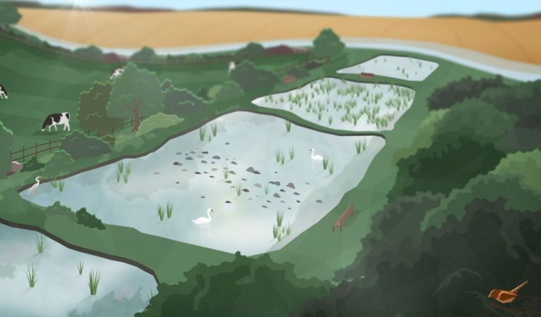 Natural Capital Animation