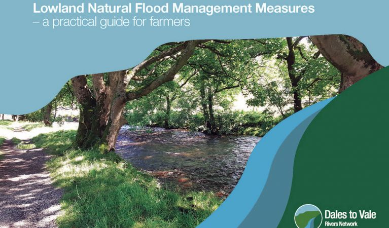 Lowland Natural Flood management